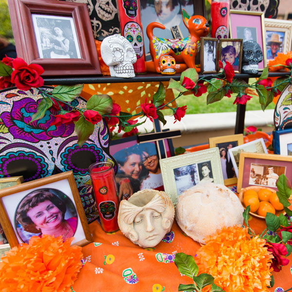 Press Release: AXIS Day of the Dead Celebration